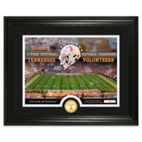University of Tennessee Football National Champions Bronze Coin Photo Mint