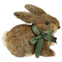Northlight Springtime Sisal Easter Laying Bunny in Brown