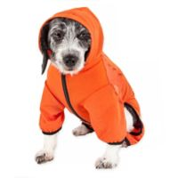 Pawsterity Medium Two-Toned Performance Pet Hoodie in Orange