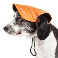 Large Cap-Tivating Fashion Dog Hat in Orange