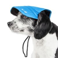 Large Cap-Tivating Fashion Dog Hat in Blue