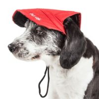Large Cap-Tivating Fashion Dog Hat in Red