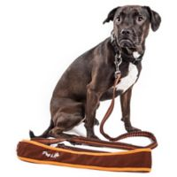 Large Free-Fetcher Hands Free Dog Leash in Brown