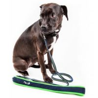 Large Free-Fetcher Hands Free Dog Leash in Navy