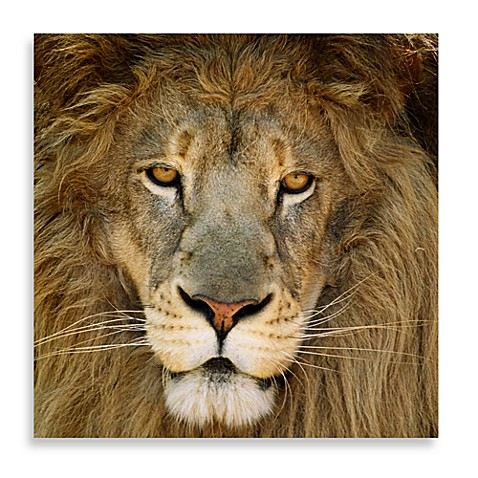 King 16-Inch x 16-Inch Printed Canvas