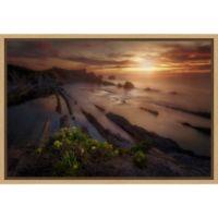 Amanti Art® Ivan Ferrero 1.88-Inch x 16-Inch Framed Canvas in Maple