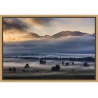 Amanti Art® Nina Pauli 1.88-Inch x 16-Inch Framed Canvas in Maple