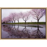 Amanti Art® Kouji Tomihisa 1.88-Inch x 16-Inch Framed Canvas in Maple