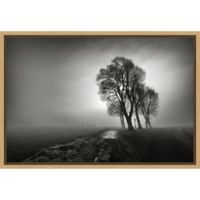 Amanti Art® Arnaud Maupetit 1.88-Inch x 16-Inch Framed Canvas in Maple