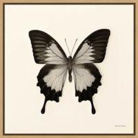 Amanti Art® Debra Van Swearingen 22-Inch Square Framed Canvas in Maple