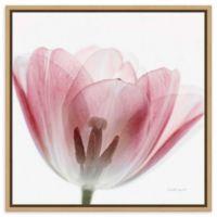 Amanti Art® Elizabeth Urquhart 22-Inch Square Framed Canvas