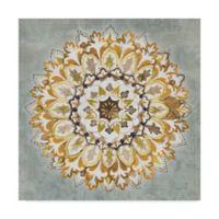 Trademark Fine Art Mandala Delight II 14-Inch Square Canvas Wall Art