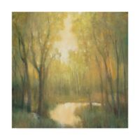 Trademark Fine Art Forest Sanctuary II 14-Inch Square Canvas Wall Art