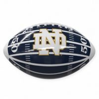 University of Notre Dame Field Mini-Size Glossy Football