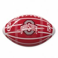 Ohio State University Field Mini-Size Glossy Football