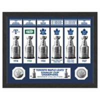 NHL Toronto Maple Leafs Stanley Cup Championship Banner Frame