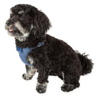 Pet Life® Medium Flam-Bowyant Adjustable Dog Harness in Navy