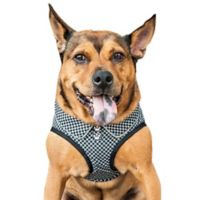 Pet Life® Medium Checkerwag Adjustable Dog Harness