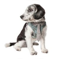 Pet Life® Small Fidomite Adjustable Dog Harness in Blue