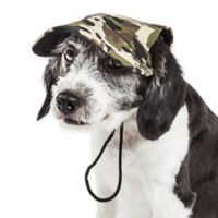 Pet Life™ Torrential Downfour Camouflage Medium Dog Cap in Green
