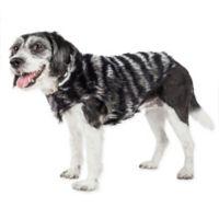 Medium Luxe Chauffury Zebra Mink Fur Dog Coat in Black