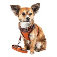 Pet Life® Medium LUXE Pawsh 2-in-1 Mesh Adjustable Dog Harness in Orange