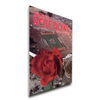 1985 Rose Bowl USC vs. Ohio State Football Bowl Game Wall Art