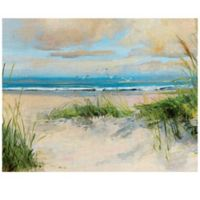 Masterpiece Art Gallery Catching the Wind 30-Inch x 40-Inch Canvas Wall Art