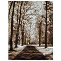 Masterpiece Art Gallery Wooded Journey II 18-Inch x 24-Inch Canvas Wall Art
