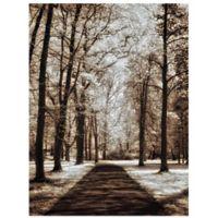 Masterpiece Art Gallery Wooded Journey II 24-Inch x 36-Inch Canvas Wall Art