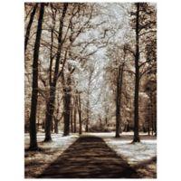 Masterpiece Art Gallery Wooded Journey II 30-Inch x 40-Inch Canvas Wall Art
