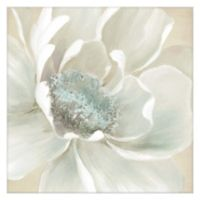 Masterpiece Art Gallery Winter Blooms I 20-Inch x 20-Inch Canvas Wall Art