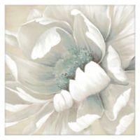 Masterpiece Art Gallery Winter Blooms II 20-Inch x 20-Inch Canvas Wall Art