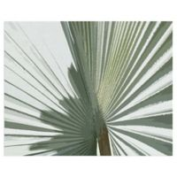 Masterpiece Art Gallery Palms Frond II 22-Inch x 28-Inch Canvas Wall Art