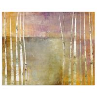 Masterpiece Art Gallery Birch III 28-Inch x 22-Inch Canvas Wall Art