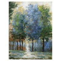 Masterpiece Art Gallery Afternoon Light 40-Inch x 30-Inch Canvas Wall Art