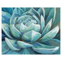 Masterpiece Art Gallery Cerulean Succulent 28-Inch x 22-Inch Canvas Wall Art
