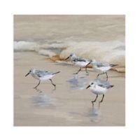 Masterpiece Art Gallery Sandpiper Beach I Amber 20-Inch Square Canvas Wall Art