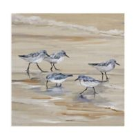 Masterpiece Art Gallery Sandpiper Beach II Amber 20-Inch Square Canvas Wall Art
