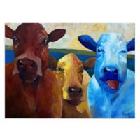 Masterpiece Art Gallery Primary Cowlers 28-Inch x 22-Inch Canvas Wall Art