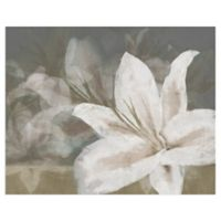 Masterpiece Art Gallery Floating Flowers 16-Inch x 20-Inch Canvas Wall Art
