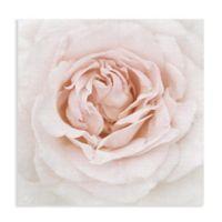 Dew Drop Rose 20-Inch Canvas Wall Art