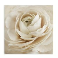 Dream 20-Inch Wrapped Canvas Wall Art