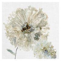 Carol Robinson Ivory Spring II 20-Inch x 20-Inch Canvas Wall Art