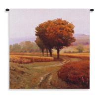 Pure Country Charmony 60-Inch x 60-Inch Tapestry