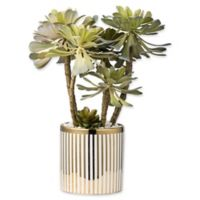 A&B Home Artificial Potted Succulent in Striped Planter