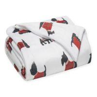 Warm Doggies Printed Plush Twin Blanket in Red/Black