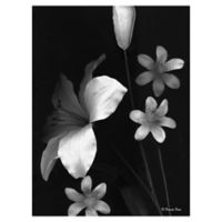 Frannie Funn Two Lilies 18-Inch x 24-Inch Wrapped Canvas Wall Art