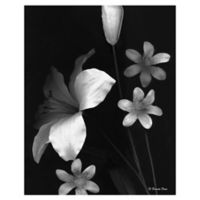 Frannie Funn Two Lilies 22-Inch x 28-Inch Wrapped Canvas Wall Art