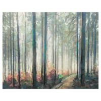 Studio Arts 22-Inch x 28-Inch Woodland Journey Wrapped Canvas Wall Art